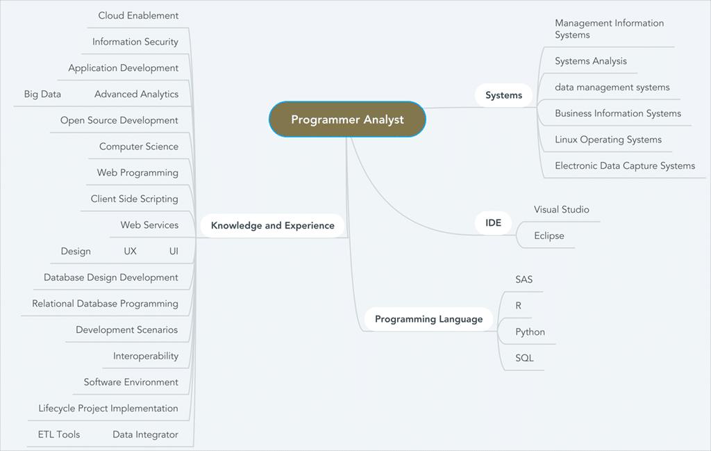 Programmer Analyst Resume Keywords and Skills